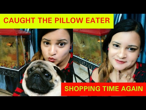 GOT SO MANY STUFF|| HOUSE TURNING INTO SWIMMING POOL|| CAUGHT THE PILLOW EATER