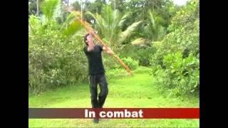 An experiment of Sri Lankan kung fu martial art - part2