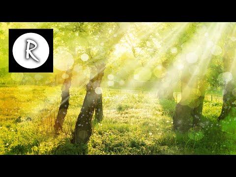 Pachelbel s Canon in D ★ Best version ★ 3 Hours ★