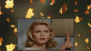 Watch Bewitched Season 1 - 10 Episodes - Nonstop (Episodes 1-10)