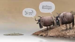 دو گاو، چوب یا تمساح؟ دوبله مازندرانی