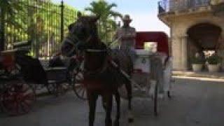 Menos visitantes de EEUU afectan a carruajes tirados por caballos en Cuba