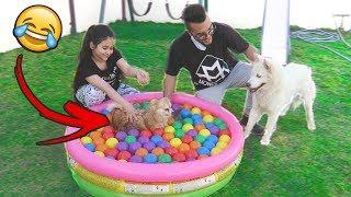 سبحنا روز والكلبة الجديدة ولعبنا بالبلونات🎈 !!