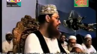 Bangla: Risalat by Allama Delwar Hossain Sayeedi
