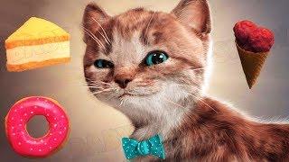 Lindo Gatito Aventuras - Dibujos Animados Infantiles | Capítulo 1