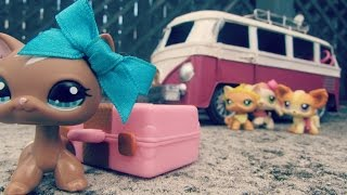 ☼Littlest Pet Shop: Summer Camp (Season 1, Episode 1: