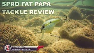 SPRO Fat Papa Squarebill Crankbait Underwater Video