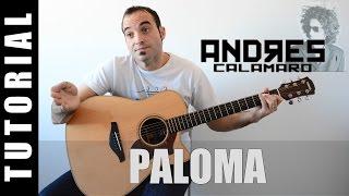 Como tocar Paloma - Andrés Calamaro Guitarra TABS, letra y acordes FACIL