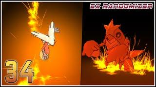 Pokémon Rubí Omega Ex Randomizer Capítulo 34 - 1000 MANERAS DE HACER SUFRIR A BLAZIKEN