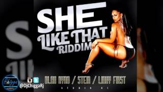 She Like That Riddim - Instrumental (S91 Records) Dancehall 2017
