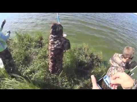 мистер макс ловит рыбу в реке