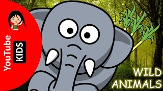 Learn Wild Animals Names and Sounds with Actual Pictures - YouTube Kids
