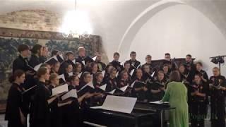 Vilniaus Gedimino technikos universiteto akademinio choro koncertas. Choro vadovė Rasa Viskantaitė.