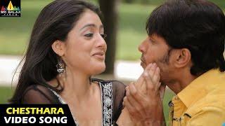Vennela Songs   Chesthara Love Video Song   Raja, Parvati Melton   Sri Balaji Video