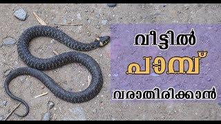 വീട്ടില് പാമ്പ് വരാതിരിക്കാന്/Malayalam Health Tips