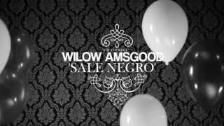 ★ Wilow Amsgood -- Sale Negro M/V
