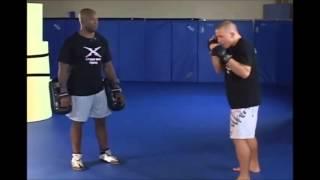 Georges St Pierre's(GSP) MMA Technique
