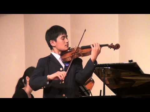 J. Haydn Violin Concerto in G major Movement 1