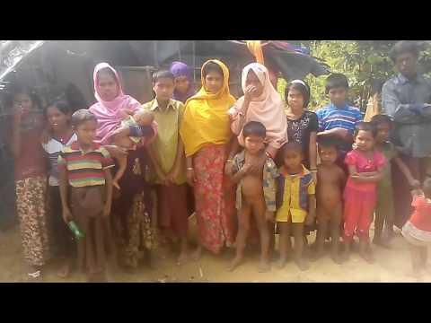 Rohingya daily news today,28/11/16 please help them