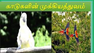SSLC Geography  - Importance of forests in Tamil