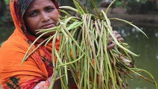 Farm Fresh Arum-Lobe Recipe Delicious Kochur Loti with fish Curry How to cook Arum-Lobe Village Food