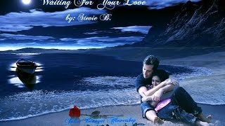 Waiting For Your Love - Stevie B.