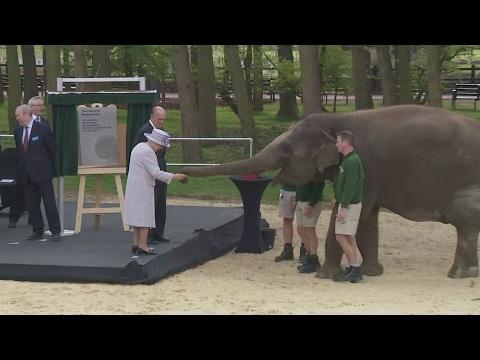 Xxx Mp4 Queen And Duke Of Edinburgh Feed Elephants Bananas 3gp Sex
