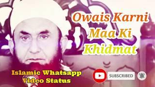 Owais Karni Maa Ki Khidmat ❤️ Maulana Tariq Jameel Bayan ❤️ Islamic Whatsapp Status Video