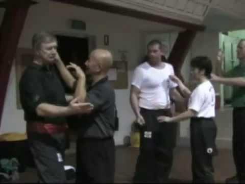 Southern Praying Mantis Kung Fu - Grandmaster Henry Sue