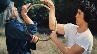 El puño de la serpiente - Jackie Chan, (1978)