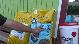 Alimento para gallinas ponedoras y Más de Tractor Supply!