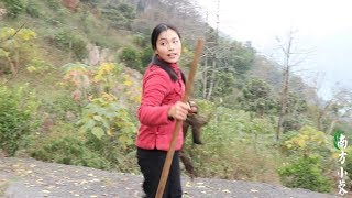 【南方小蓉】深山發現1姑娘,生活在大山之中與世隔絕,挖食野樹根燉肉