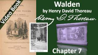 Chapter 07 - Walden by Henry David Thoreau - The Bean-Field