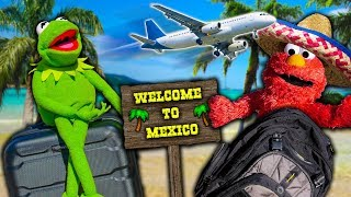 Kermit the Frog and Elmo's Vacation Trip to Mexico!