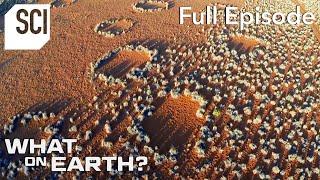 Mysterious Rings in the Namib Desert | What On Earth? (Full Episode)
