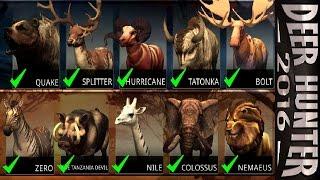 Deer Hunter 2016 [1 Hour Hunt] [Part 4]