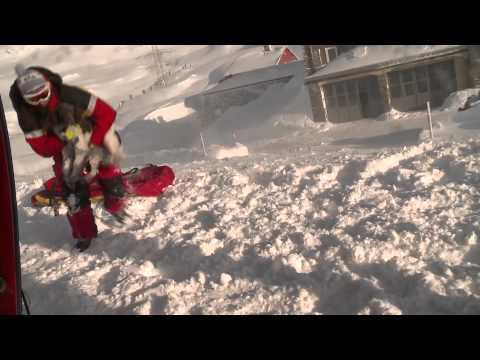 Rega: First helicopter flight for young avalanche rescue dogs