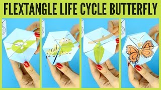 Butterfly Life Cycle Paper Toy Template - flextangle printable