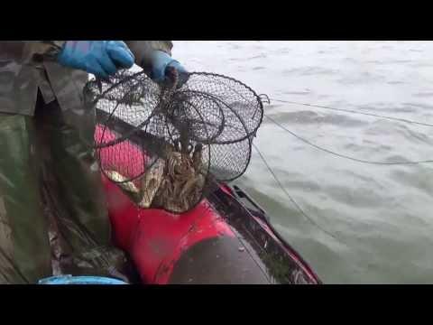 как можно ловить раков на реке