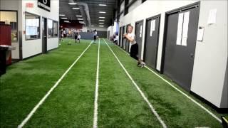 Advanced QB drills-Noah Wezensky and Aidan Smith