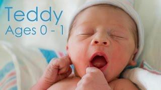 Teddy Ages 0 - 1 | Bon Appétempt | PBS Digital Studios