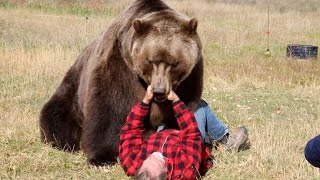 How to Survive a Bear Attack (Episode 1)   Good Morning America   ABC News