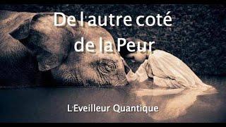 Vivez l'Eveil -  l'Amour et la Peur - L'Eveilleur Quantique -  Motivation -