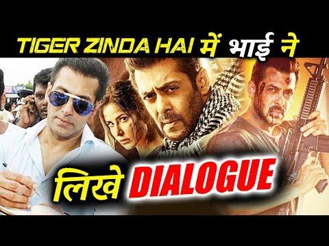 Xxx Mp4 Salman Khan ने लिखे है Tiger Zinda Hai के धमाकेदार DIALOGUES खुल गया राज़ 3gp Sex