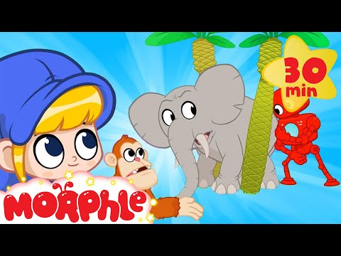 Morphle s Zoo Animals Tigers Monkeys and Elephants Cartoons for Kids Morphle TV