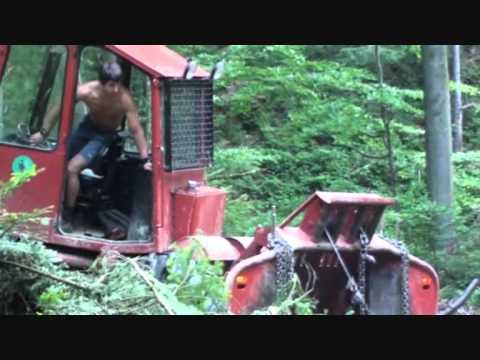 Tree Logging Bieszczady Zrywka drewna Bieszczady