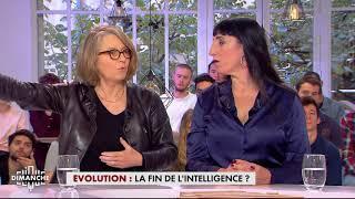 Evolution : La fin de l'intelligence ? - Clique Dimanche du 19/11 - CANAL+