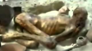 Firon ki lash - Jauharganj - Hazaribagh - Jharkhand - YouTube_2
