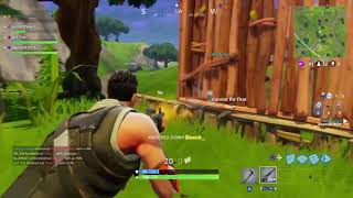 Fortnite Stealth and Funny Moments