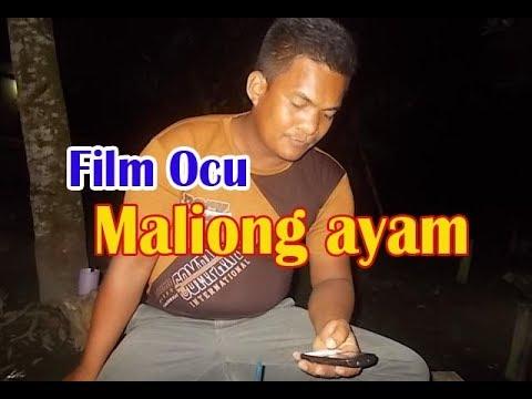 Maliong Ayam (  Film Ocu Terkini  2017 ) // Ijun Datuok